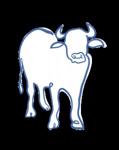le-bufale